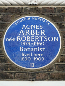 A colour photograph of a blue plaque on a grey brick wall, with white text displaying information about Agnes Arber.